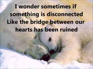 polar bear broken heart